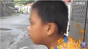 吵架,鬥嘴,童言童語,白癡 圖/翻攝自YouTube