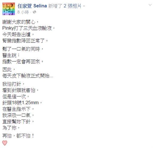 任家萱 Selina臉書