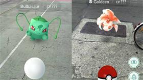 寶可夢、精靈寶可夢、pokemon go