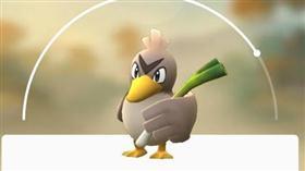 寶可夢,大蔥鴨_ http://pokemongoglobal.com/project/083-farfetchd/