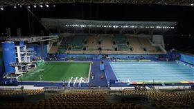 奧運泳池變綠色(圖/美聯社/達志影像)
