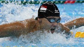 新加坡泳將新星史庫靈 Joseph Schooling(圖/美聯社/達志影像)