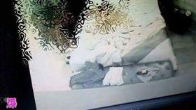 雲河概念旅館,偷拍,性愛光碟(圖/翻攝自爆料公社) https://www.facebook.com/permalink.php?story_fbid=326083374408821&id=162608724089621