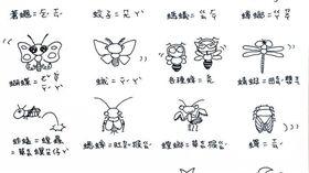 昆蟲台語教學-翻攝自「吳沁婕:勇敢做夢吧!」粉絲專頁