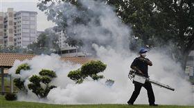 茲卡 新加坡  美聯社/達志影像
