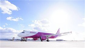樂桃航空(圖/翻攝自Peach Aviation[Taiwan]臉書專頁) https://www.facebook.com/Peach.Aviation.Taiwan
