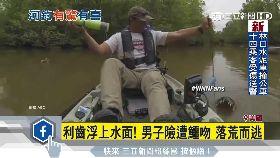 釣魚釣到鱷g1200