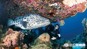 一生至少要去一次!年度世界最佳旅遊目的地 大堡礁奪冠