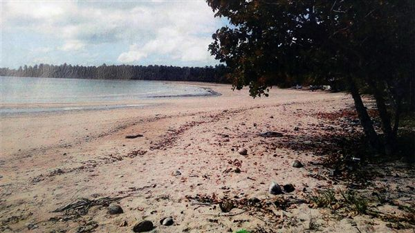 周元生在菲律賓巴拉望擁有1.29公頃私人沙灘(圖/翻攝自星洲日報)