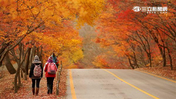 韓國賞楓:全羅北道內藏山。(圖/韓國觀光公社提供)