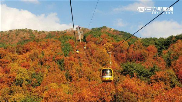 韓國賞楓:大邱八公山 纜車。(圖/韓國觀光公社提供)