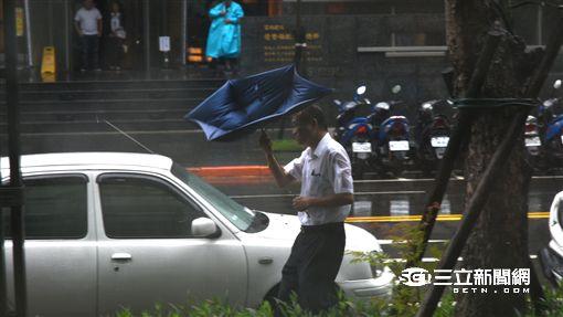 下雨,颱風天,颱風,風雨,颱風假,颳風,雨傘,開花 圖/記者林敬旻攝