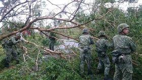 莫蘭蒂颱風過境金防部動起來災後復原 國防部提供