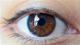 眼睛 (shutterstock/達志影像)
