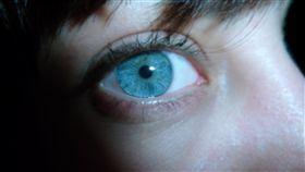 眼睛  https://www.flickr.com/photos/cristian_roberti/5967081227/in/photolist-a6hRmP-5bmE9T-9224X5-dWcGcU-cRBHW7-rgBNGV-dUtxme-7yG73K-owPmHs-ogcCTi-ofwwSw-6Py1F6-dMwszR-hvL2cU-dQGN2o-dpH7X9-isbZiZ-amcUEZ-6CS87X-5XGFJE-89oXvK-bAnrqo-dW74JT-5XitPW-8FsPCT-cCgADf-rfZX6-6tXnaY-ddcLef-h9KdSh-owKkge-ds3cde-oxGbNX-dxHpk1-dFoZuy-oxrNUy-dGmmfT-igYXdo-pnD9Ei-GuHwEE-dtVSaZ-dF5gR7-dxBDX8-deLR1L-75ADoq-dMwseP-DH6w1V-cRwBAw-oxGifz-aX31HF