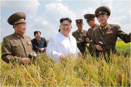 南韓,北韓,金正恩 圖/路透社/達志影像