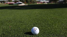 高爾夫球 圖/達志影像