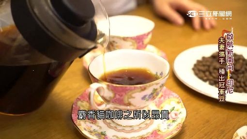 台商深耕印尼萬隆 麝香貓咖啡淘金