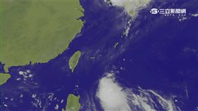 第19號颱風