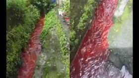 血,血流成河 圖/翻攝自爆料公社