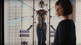蟻人,黃蜂女,Nicole Evangeline(圖/翻攝自JoBlo Movie Trailers YouTube) https://www.youtube.com/watch?v=eOGtBCIKR2A