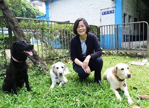 蔡英文,導盲犬 翻攝蔡英文 Tsai Ing-wen臉書