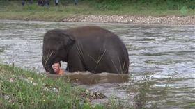 動物,人類,大象,溺水,河川,泰國,清邁,旅遊業,收容所,Derek,Kham Lha,獵殺(https://www.youtube.com/watch?v=uVceZEfAsTc)