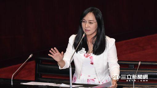 民進黨立委陳瑩 圖/記者林敬旻攝