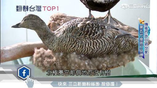 台製百年羽絨廠 堅持高品質稱霸全球