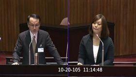 陳怡潔,黃昭元 圖/翻攝自立法院直播