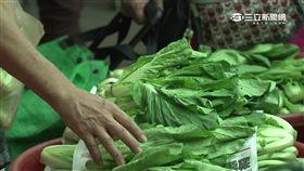 -菜價-菜市場-