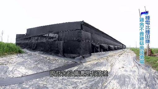 """農田長出太陽能板 不種田改種電""""變相掠奪"""""""