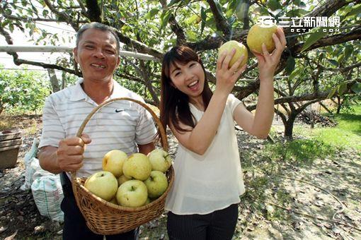 ITF/台灣怎麼玩?跟著四季水果甜蜜旅行吧!