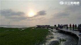 高美濕地,風景 圖/記者張碧珊攝影
