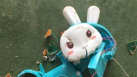 兔子,台灣,大陸,島嶼,玩具,洗腦,語音,錄音(爆料公社 https://www.facebook.com/groups/1035885209777446/permalink/1418854471480516/)