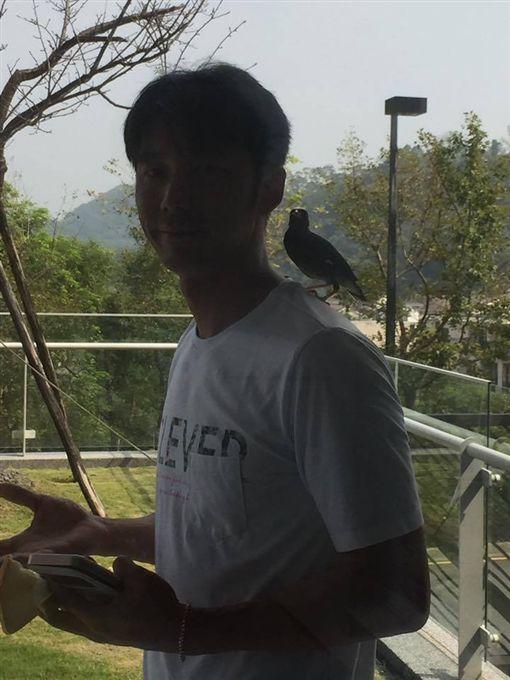 陶晶瑩,李李仁,李小龍,八哥鳥(圖/翻攝自陶晶瑩臉書)