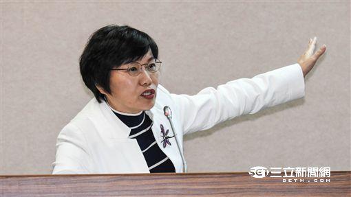 民進黨立委劉世芳 圖/記者林敬旻攝