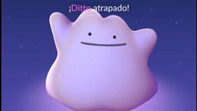 Pokemon Go,寶可夢,百變怪,上線,變身 圖/翻攝自Jose Chaparro YouTube/https://www.youtube.com/watch?v=kpq2lQSWPO0