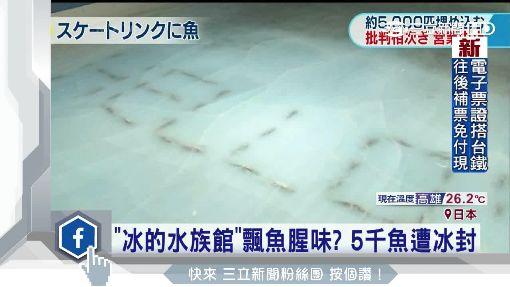 滑冰場下有假魚 遊樂園慘被批