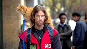 電影《遇見街貓Bob》(圖/采昌國際多媒體提供/寵物滔客誌)(名家)