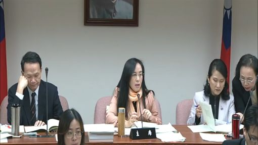 立法院衛環委員會主席陳瑩 圖/翻攝自立法院直播