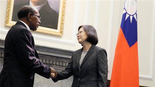 總統蔡英文接受索羅門群島新任駐華特命全權大使王哲夫(Joseph Pius Waleanisia)呈遞到任國書 圖/總統府提供