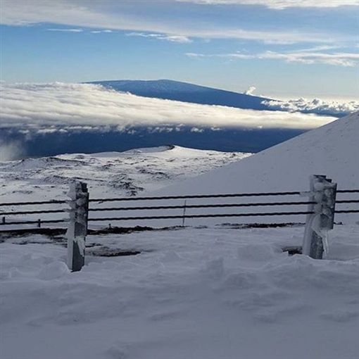 夏威夷大雪。(圖/翻攝自instagram)