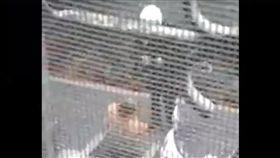 討債,下跪,員警,電鈴,喇叭,誣賴,新北,新店,噪音(爆料公社 https://www.facebook.com/162608724089621/videos/386394645044360/)