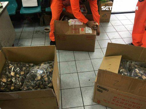 海巡署二二岸巡大隊台北安檢所破獲民眾在快遞包裹裡夾帶中國香菇走私案(翻攝畫面)