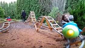 雲霄飛車,格雷格,後院,圖/翻攝自YouTube