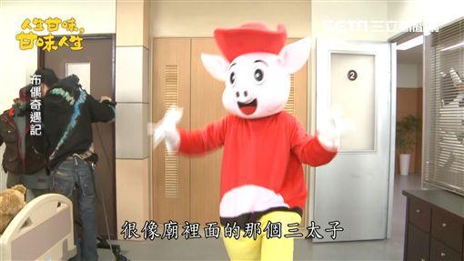 江國賓穿布偶裝 扮可愛豬仔大玩偶