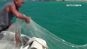 漁網纏遊客1200
