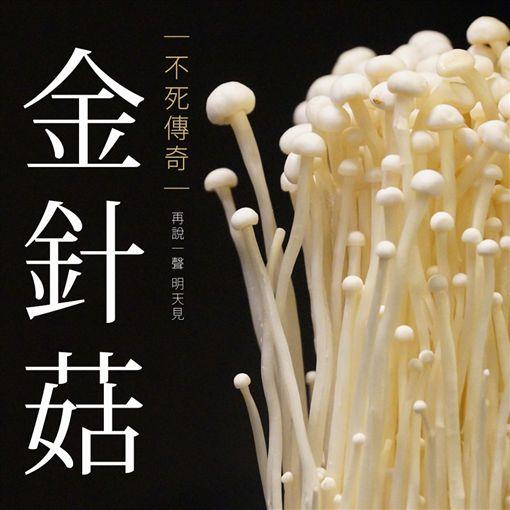 全聯,火鍋料,標語,投票(圖/翻攝自全聯福利中心臉書)