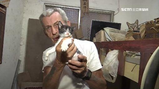 英籍爺爺養50貓 又吵又臭鄰抗議